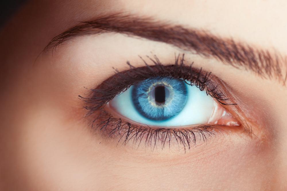 Глаза как инструмент невербального общения